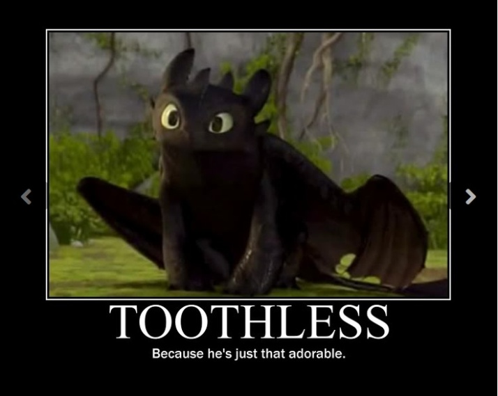 toothless_is_adorable_what_are_you_talking_about-465660